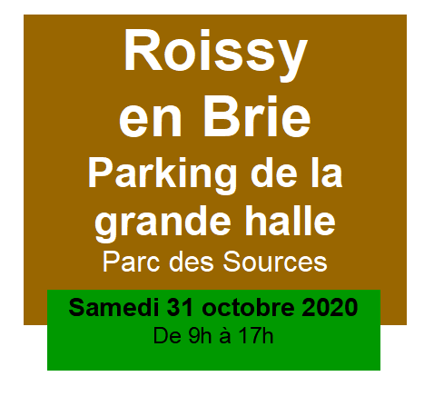 2010 Annonce Roissy Parking